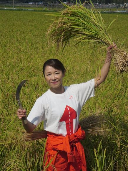 稲刈りを行う岩本公水 稲刈りを行う岩本公水 ニュースへ 注目まとめ PR お米美人は郷土愛の固ま