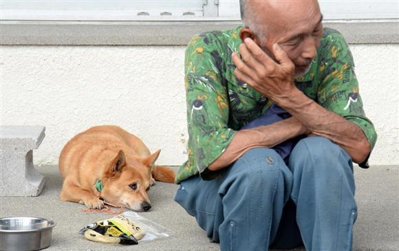 避難所で一夜を明かし、犬も疲れた表情で飼い主を見つめる=30日午前、鹿児島県屋久島町の宮之浦公民館(川口良介撮影)