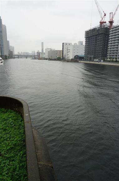 遺体の入ったスーツケースが遺棄された京浜運河=東京都品川区