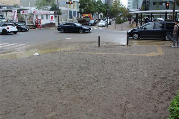 市 区 浸水 中原 川崎
