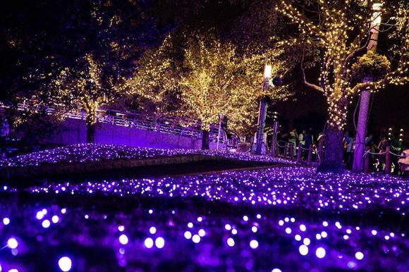 小倉イルミネーション 紫川河川敷に紫を基調にした装飾