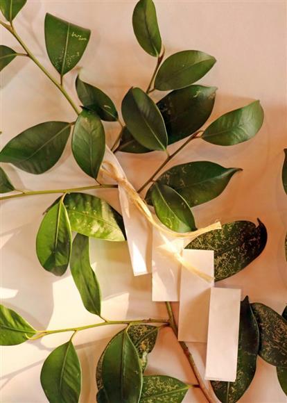 大麻は玉串の榊の葉と紙垂(しで)を結ぶ緒として使われている