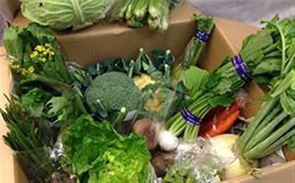 ふるさと納税のお礼に贈呈される旬の立川野菜の詰め合わせ
