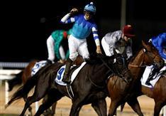 ヴィブロスが優勝 佐々木主浩氏が所有 競馬のドバイ国際競走、日本馬、2年連続